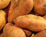 Sweet Potatoe
