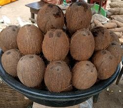oja.ng coconut