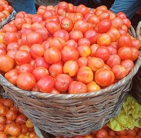 oja.ng tomatoes hausa basket