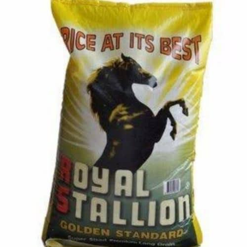 1258Royal Stallion Foreign